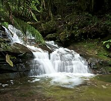 Leura cascade  by donnnnnny