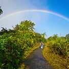 { somewhere over the rainbow } by Brooke Reynolds