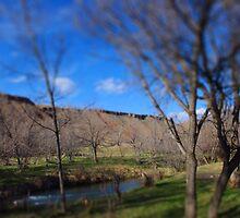 Cliff Line - Beulah, Wyoming.  by Joe Miller