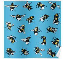 Garden Bumblebees Poster