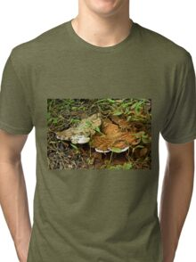 Turkey Tail Braacket Fungi With Spores Tri-blend T-Shirt