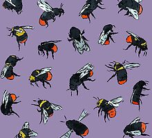 Red-Tailed Bumblebees by Tom Henderson
