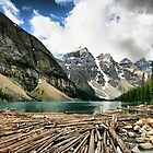 Famous Moraine Lake by Teresa Zieba