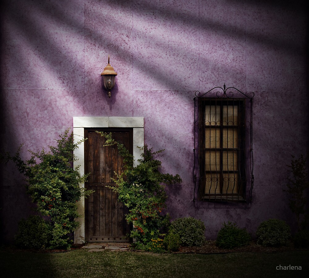 The Door..... by charlena