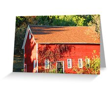 The Red Shed - Vines and Shadows Greeting Card
