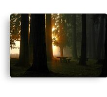 Dawn At McKercher Park Canvas Print