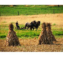Amish Country - Fall Harvest Photographic Print