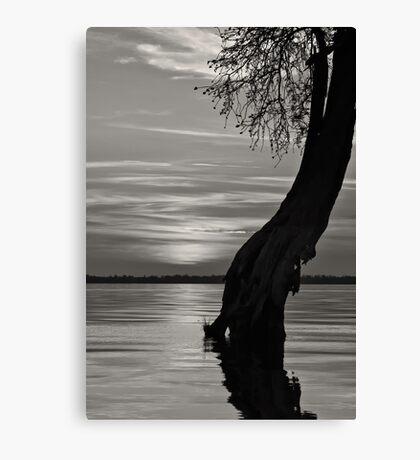 Sunset monochrome Canvas Print