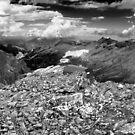 mountain bivouac by neil harrison