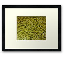 Wild animal pattern (leppard) #2, watercolor Framed Print