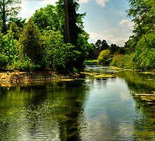 The Lake At Kew Gardens by John Hare