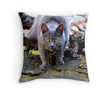 Get out of my way-Melbourne Throw Pillow
