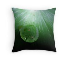 Droplet on Fern. Throw Pillow