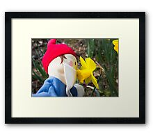 Scented Gnome Framed Print