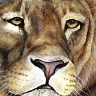 Lions face by Sarah Trett
