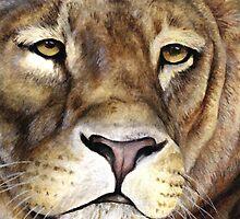 Lions face by Sarah Trett