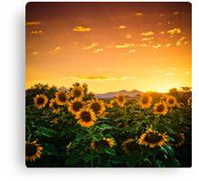 Heaven's Evening Canvas Print