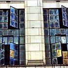 LA Windows by Cameron McHarg