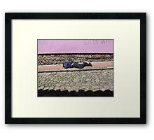 Laneway Lie Framed Print