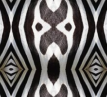 Zebra Texture Pattern made with Photography of a Zebra by CarlosV