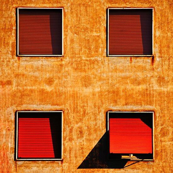 Four windows by Silvia Ganora
