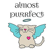 Almost Purrfect Angel Kitten Photographic Print