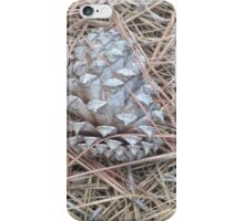pinecone iPhone Case/Skin