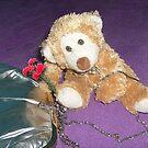 Teddy Bear with the sad eyes by Ana Belaj