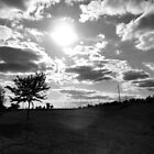 the rolling plains B&W by Loretta Marvin