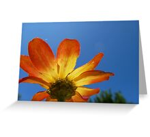 Bright Flower Greeting Card