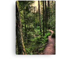 lewis and clark trail Canvas Print