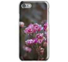Wildrose III iPhone Case/Skin