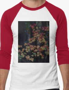 Autumn Foliage 2013 #9028 Men's Baseball ¾ T-Shirt