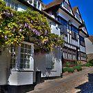 Mermaid Street,Rye by brianfuller75