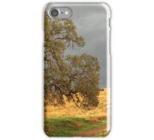 Off the Beaten Path iPhone Case/Skin