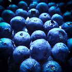 Blueberries by Owen Franssen
