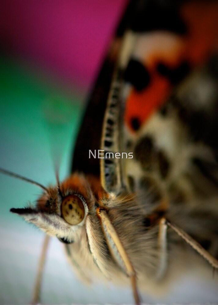 I've got my eye on you by NEmens