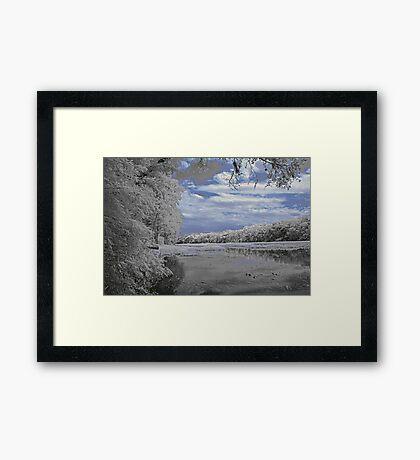 Wekiva River Framed Print