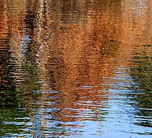 Autumnal waters by su2anne