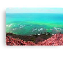 Face of the earth Canvas Print