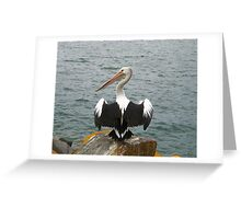 A Pelican at Pelican, NSW Greeting Card