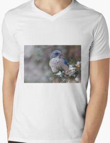 Western Scrub-Jay on snowy branch Mens V-Neck T-Shirt