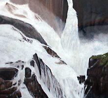 Barron Falls by Richard Klekociuk