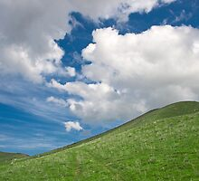 meadow and cloudy sky by Medeu