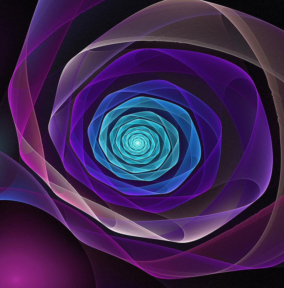 Fractal rose by Pam Blackstone