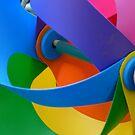 Rainbow Whirlybird by DEB CAMERON