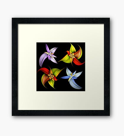Lily Montage Framed Print