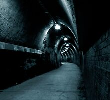 Fernleigh Tunnel by Nichole Lea