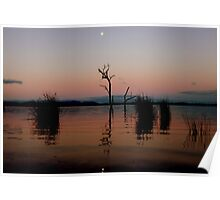 moonlight lake Poster