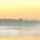 fog on iznik lake by Mustafa UZEL